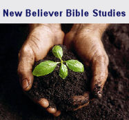 New Believers Bible Study
